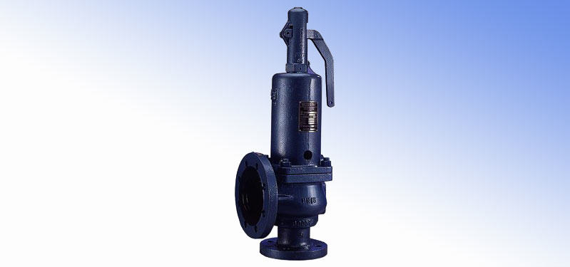 Spring-Weighted Safety Valves