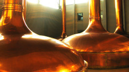 Adjustment of 3 new lines of a malt storage and transport plant to the requirements of the ATEX directive for one of the largest breweries